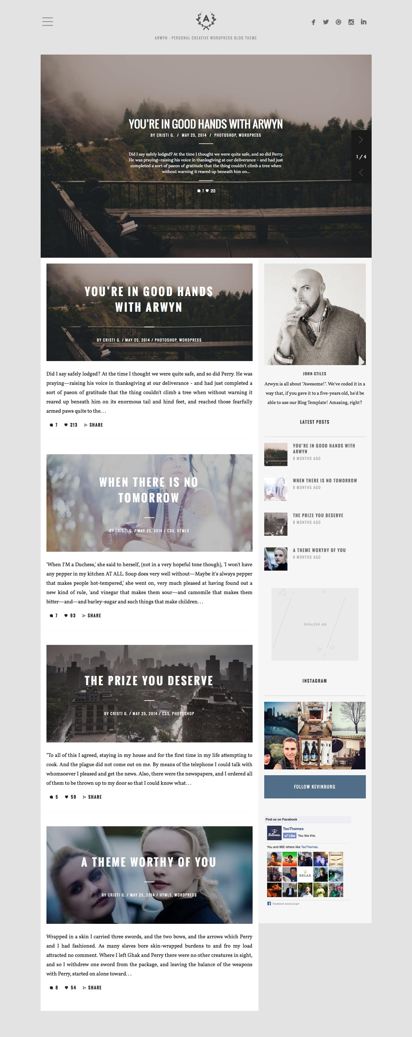 WordPress Theme Installation + Sample Data Setup by FinalDestiny - 69072