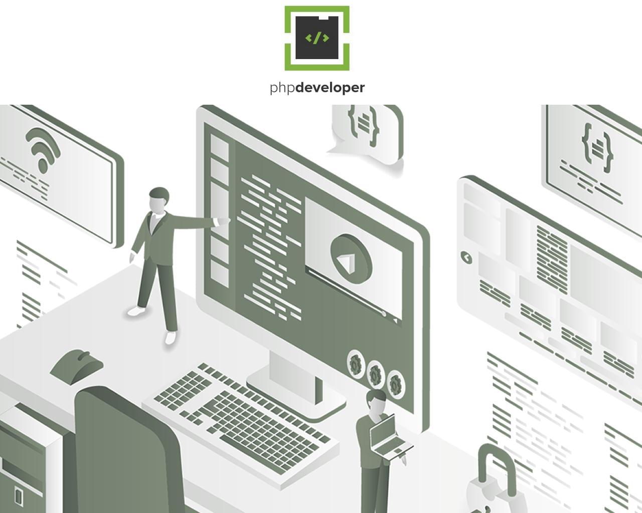 Hire Expert PHP Developer  by pluginpunch - 113846