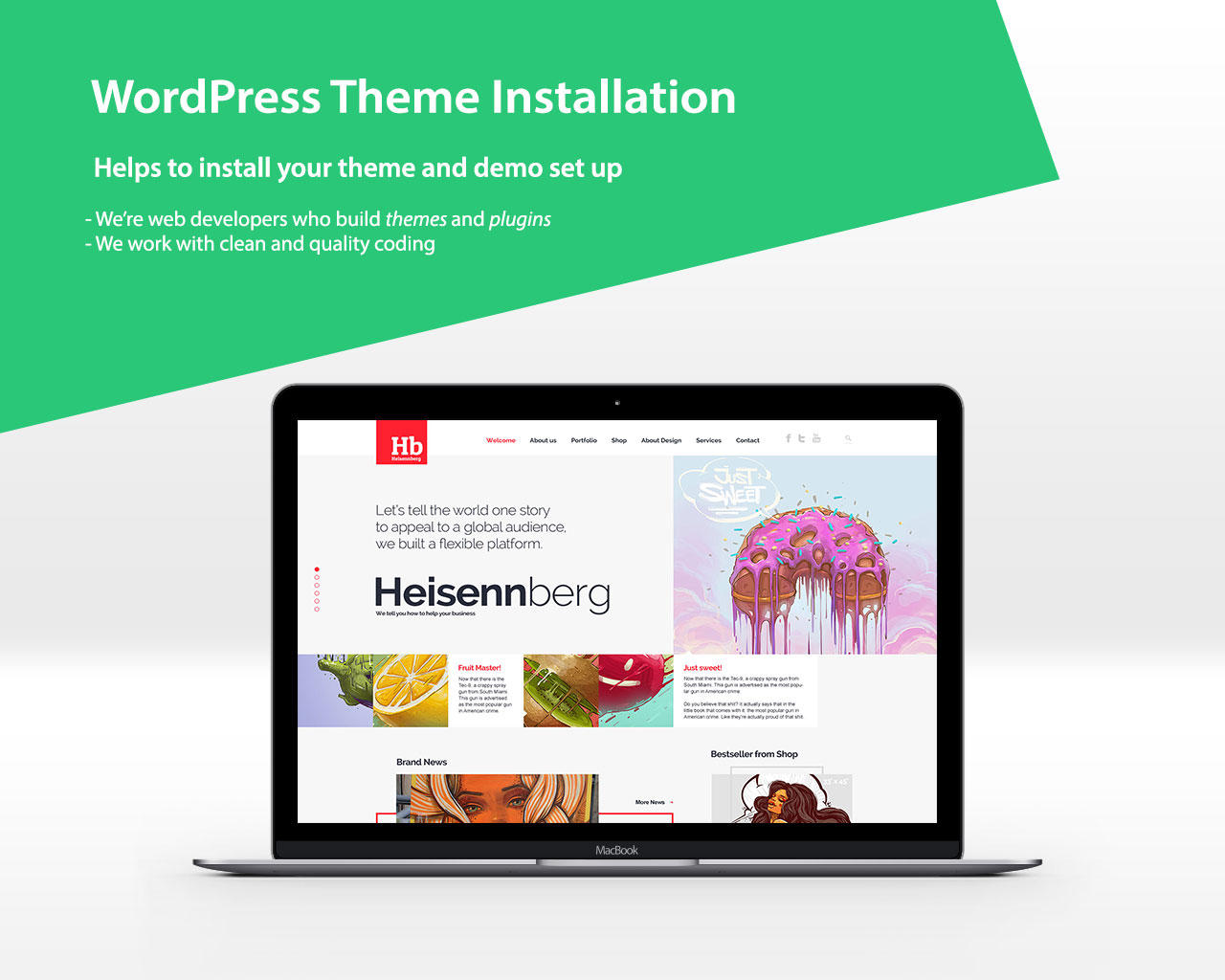 WordPress Theme Installation with Demo Set up by VicTheme - 92519