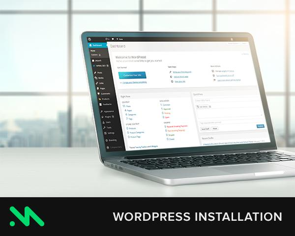 WordPress Theme Install & Setup by CreativeMaximum - 56319