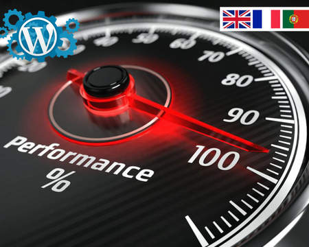WordPress Speed Optimization Services on Envato Studio