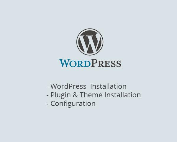 WordPress Installation & Theme & SEO, Security Plugins Install by DevPlus31 - 51002