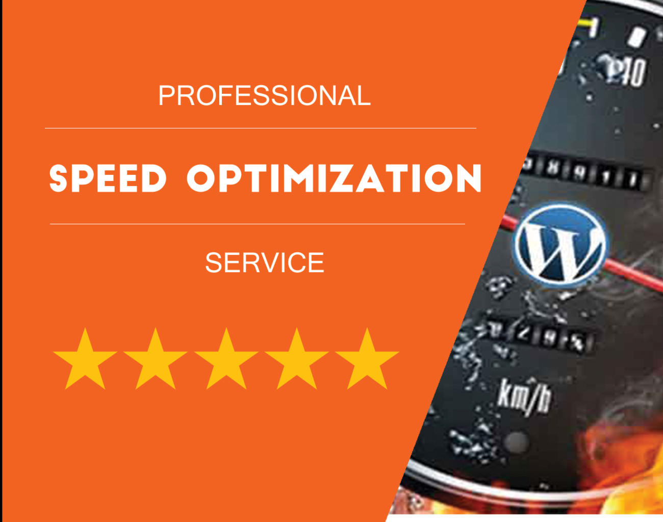 Wordpress Website Speed Optimization by hibiscustechno - 107960
