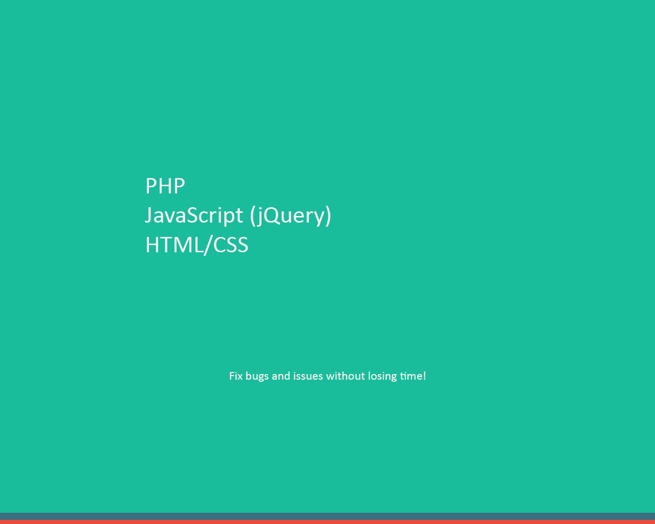 Fix your PHP, Javascript Bugs by DevPlus31 - 90767