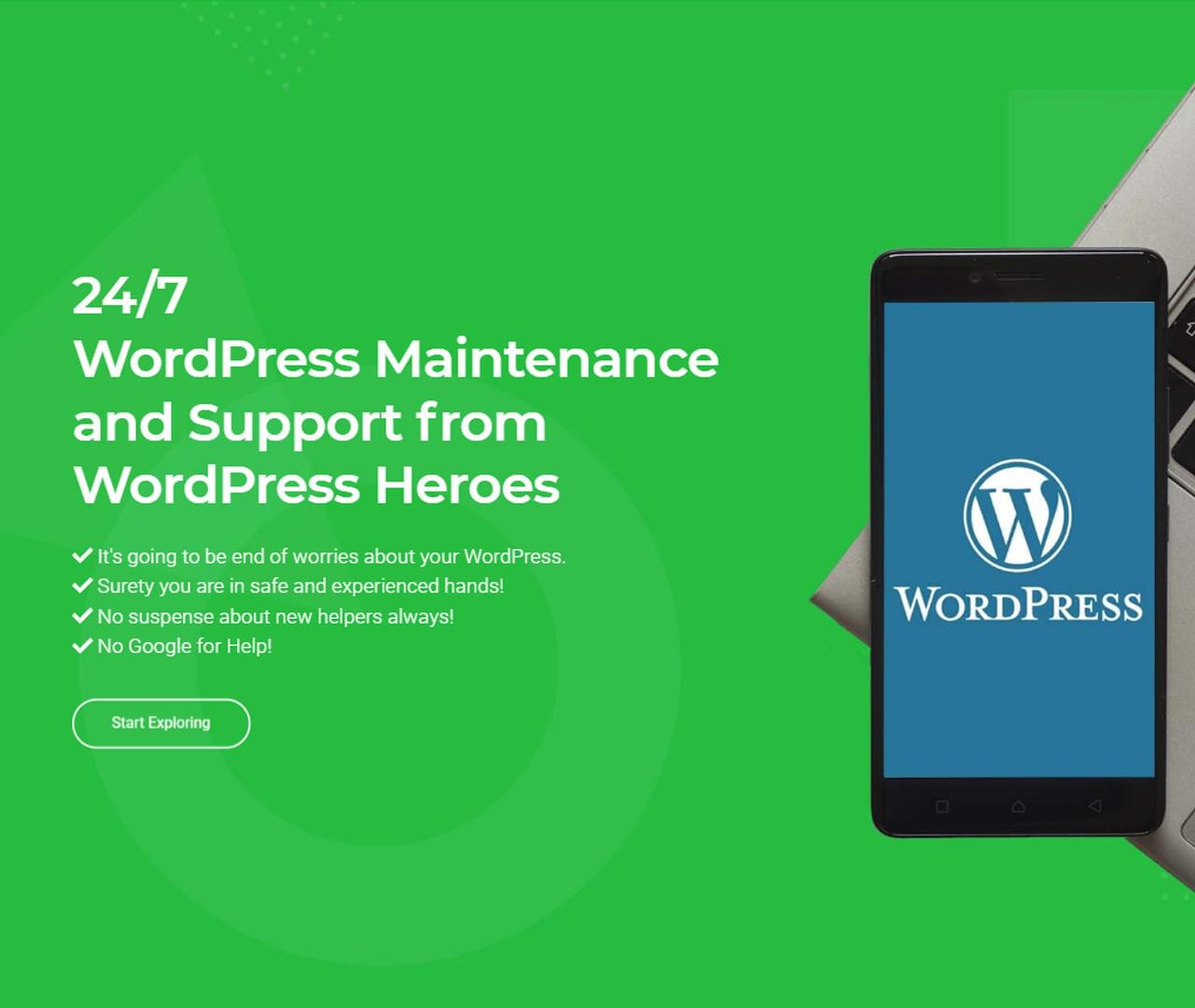 WordPress Maintenance Service All In One Monthly Service by webfulcreations - 116255