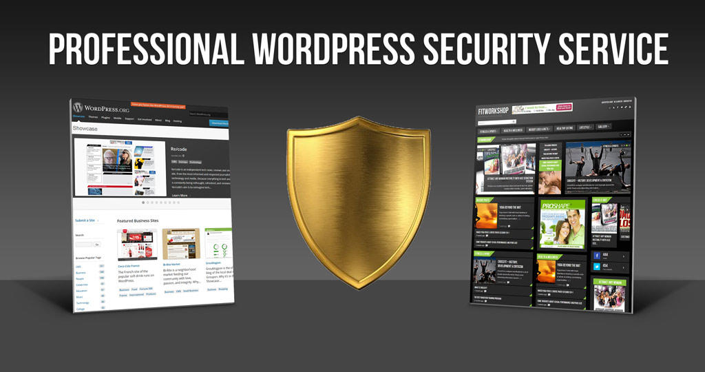 Professional Wordpress Security by CreaticaStudio - 60132
