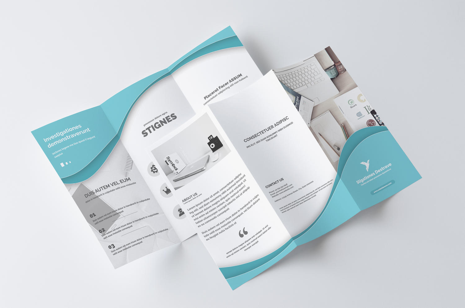 Professional trifold brochure design service by for Typography brochure design