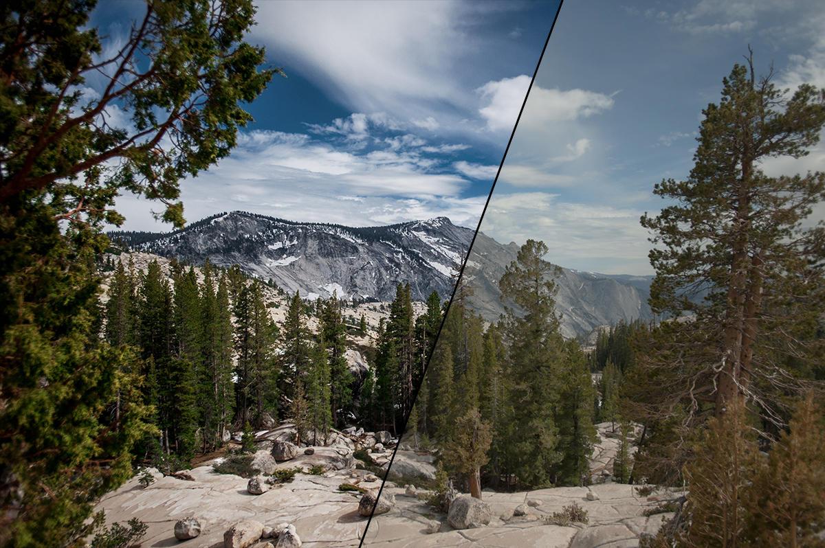Nature Photos That Need Retouching