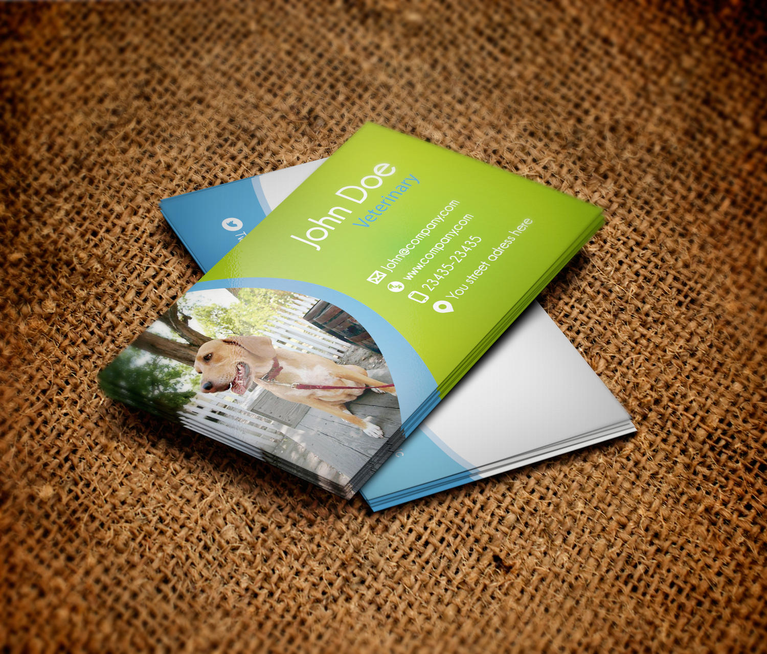 Card Design Professional by gassh - 18164