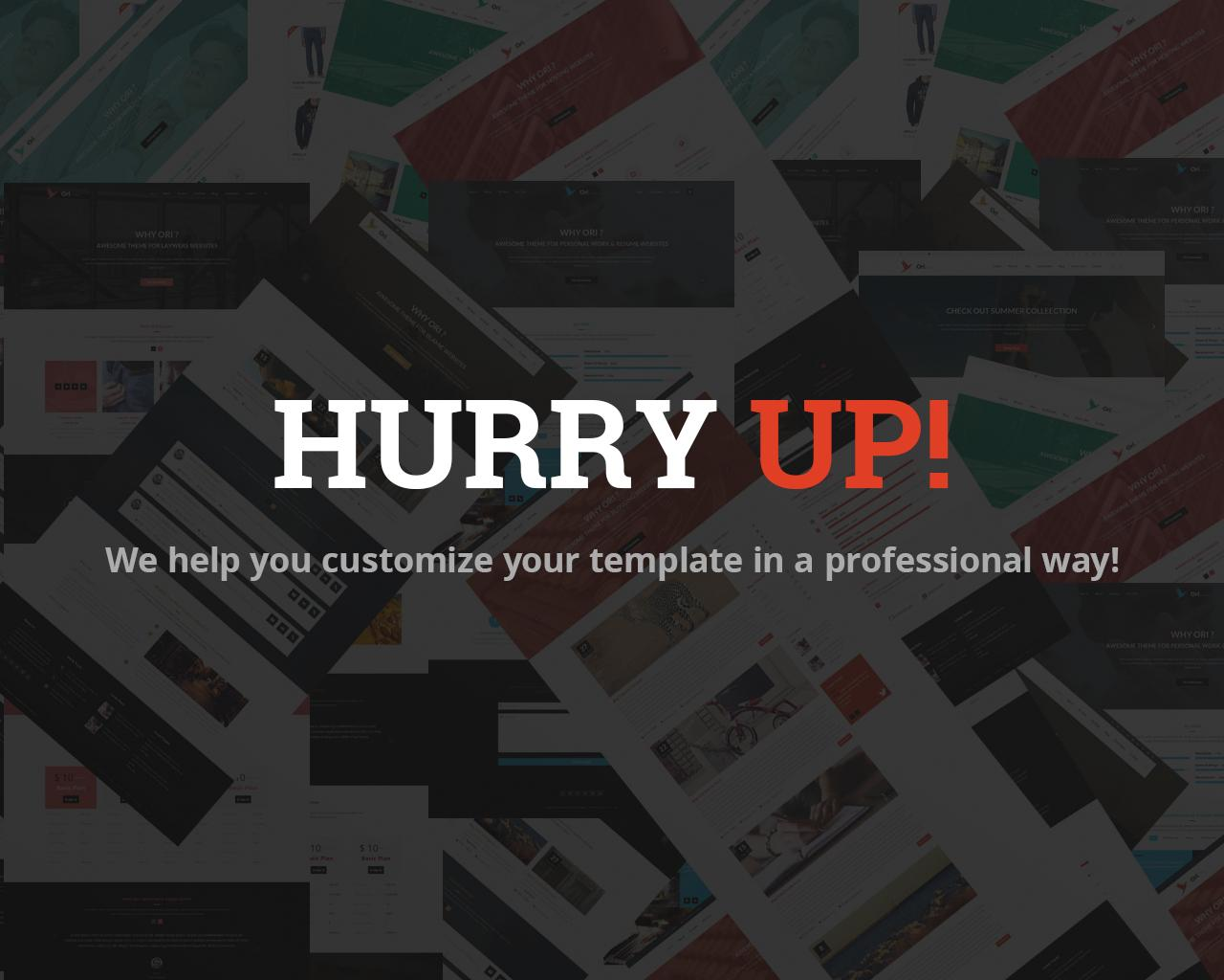 Customize/Edit your WP Theme Professionally by 2codeThemes - 68622