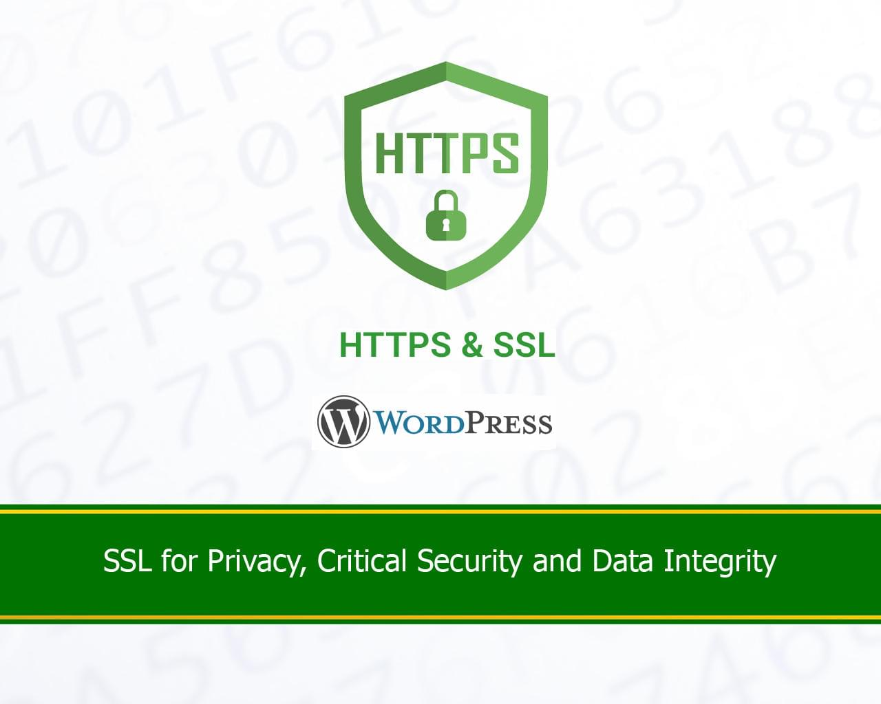 SSL HTTPS Setup and Insecure Connection Fix by nyasro - 115992