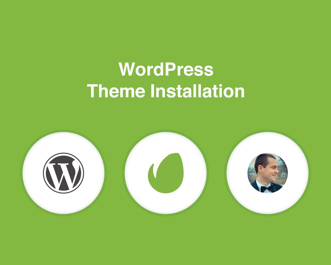 WordPress Theme Installation + Import Demo Data by liviu_cerchez - 64510