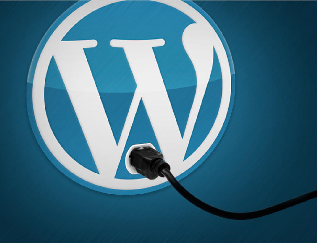 WordPress Plugin Development (Strict WordPress Coding Standards) by webholics - 48771