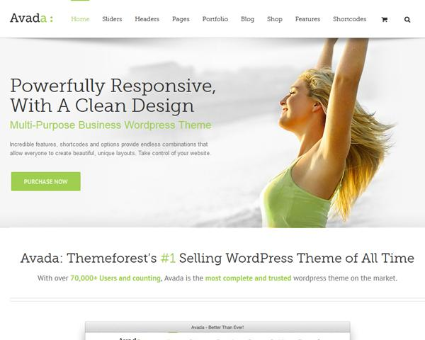 WordPress Theme Installation (Demo & Plug-in Set-up, Logo Change) by VictorThemes - 54489