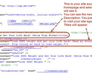 Wordpress Website SEO Optimization by weblinsolutions on ...