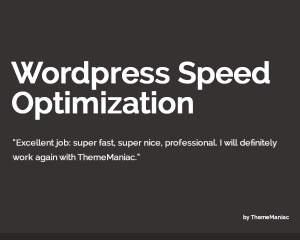 WordPress Speed Optimization by ThemeManiac on Envato Studio
