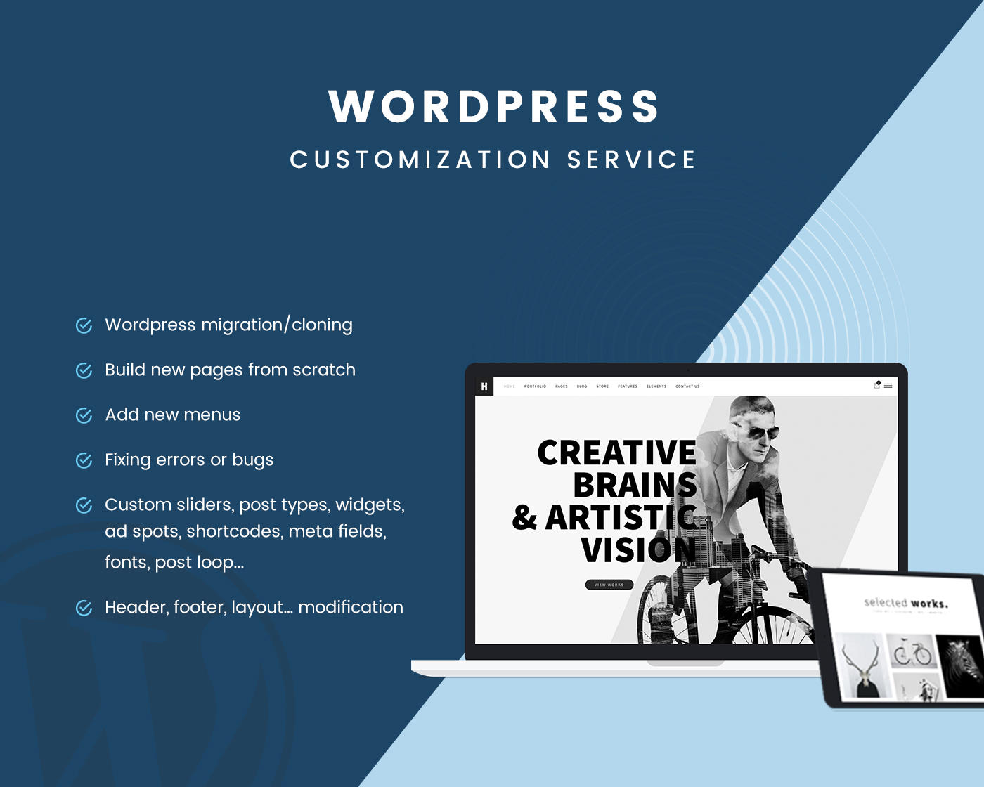 WordPress Customization All in One  by ThemeMove - 102947