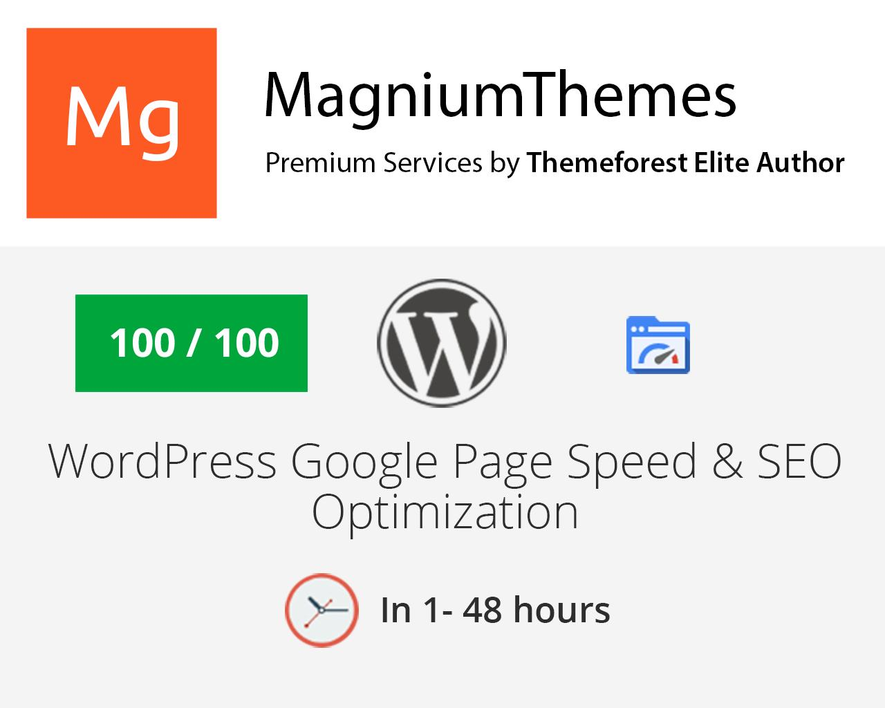 Premium WordPress Website Speed and SEO Optimization - All in One by dedalx - 105771
