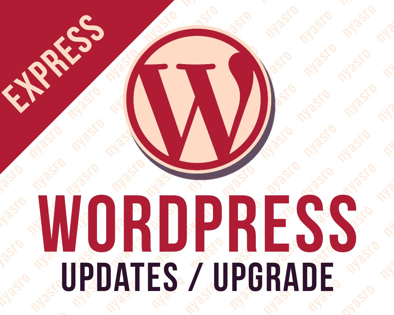 Express Wordpress Theme Update with BACKUP to Latest Version by nyasro - 99796