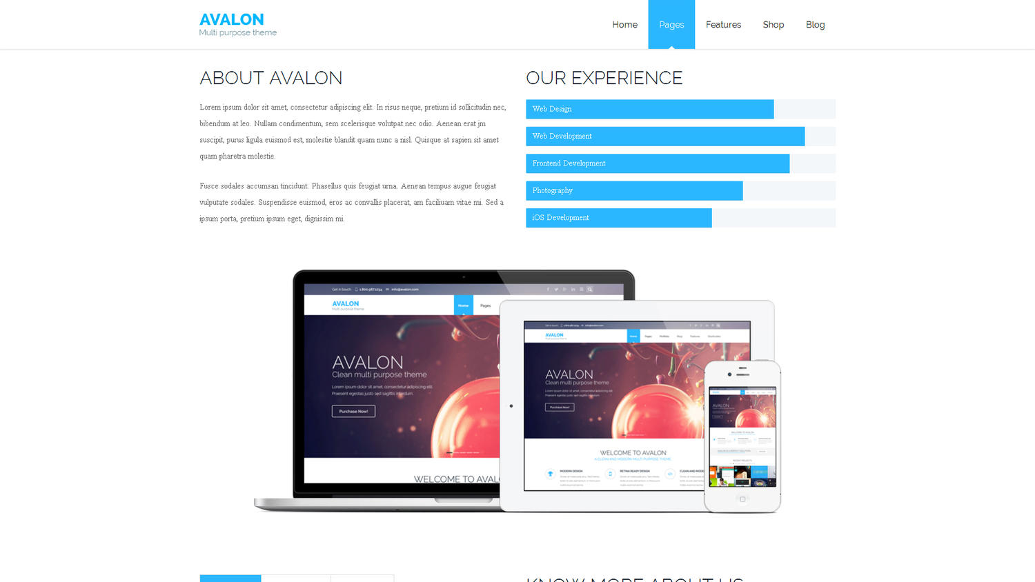 HTML Template Customization by nileshb007 - 59468