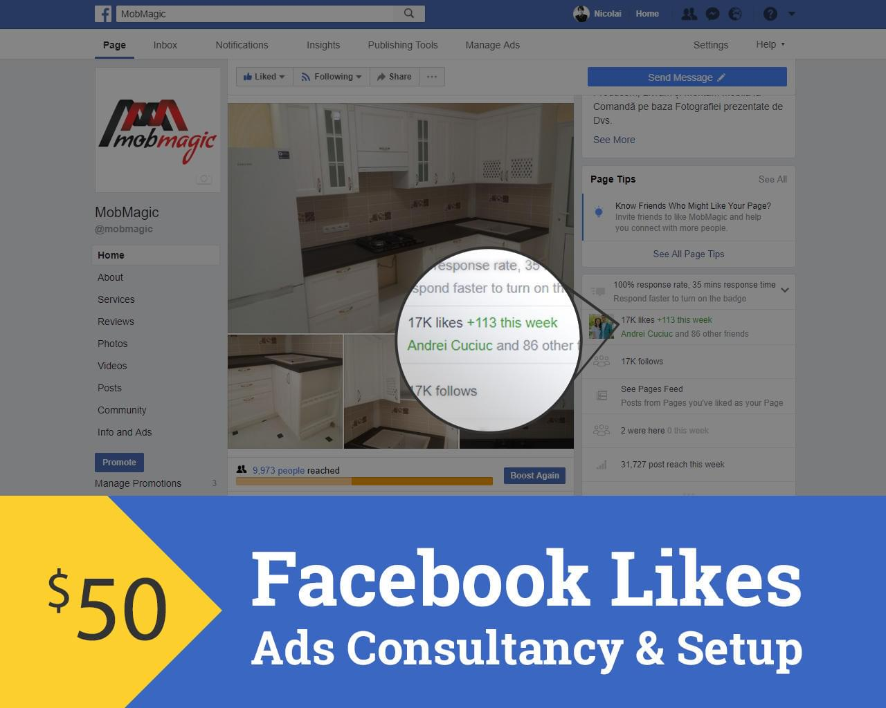 Facebook Likes - Ads Consultancy & Setup by 1theme - 113311