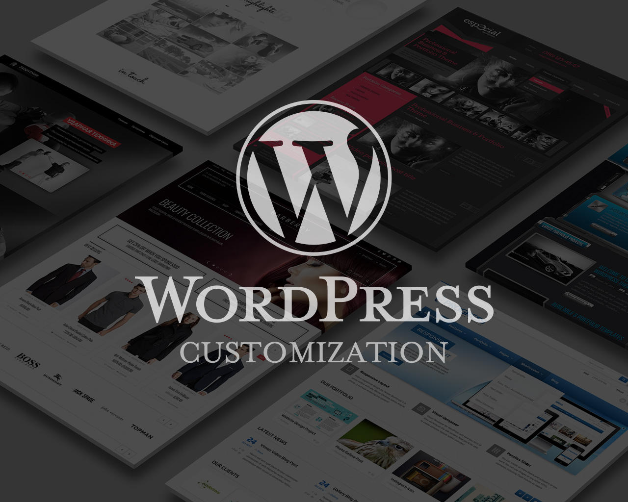 Premium WordPress Theme Customization by temash - 73200